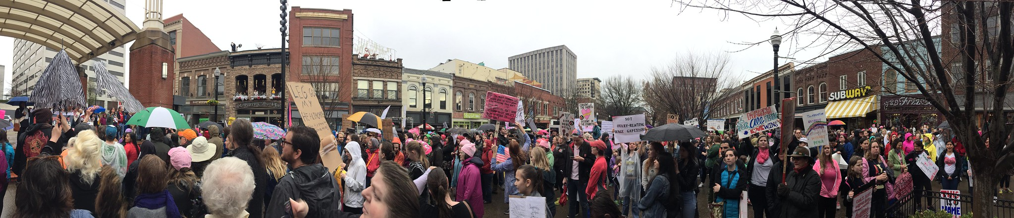Knoxville Women's March
