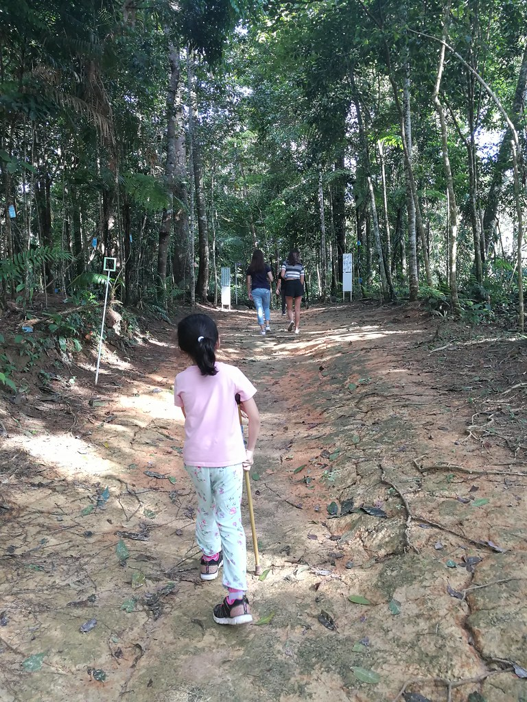 Ayra's first forest adventure in Genting with Treks Events