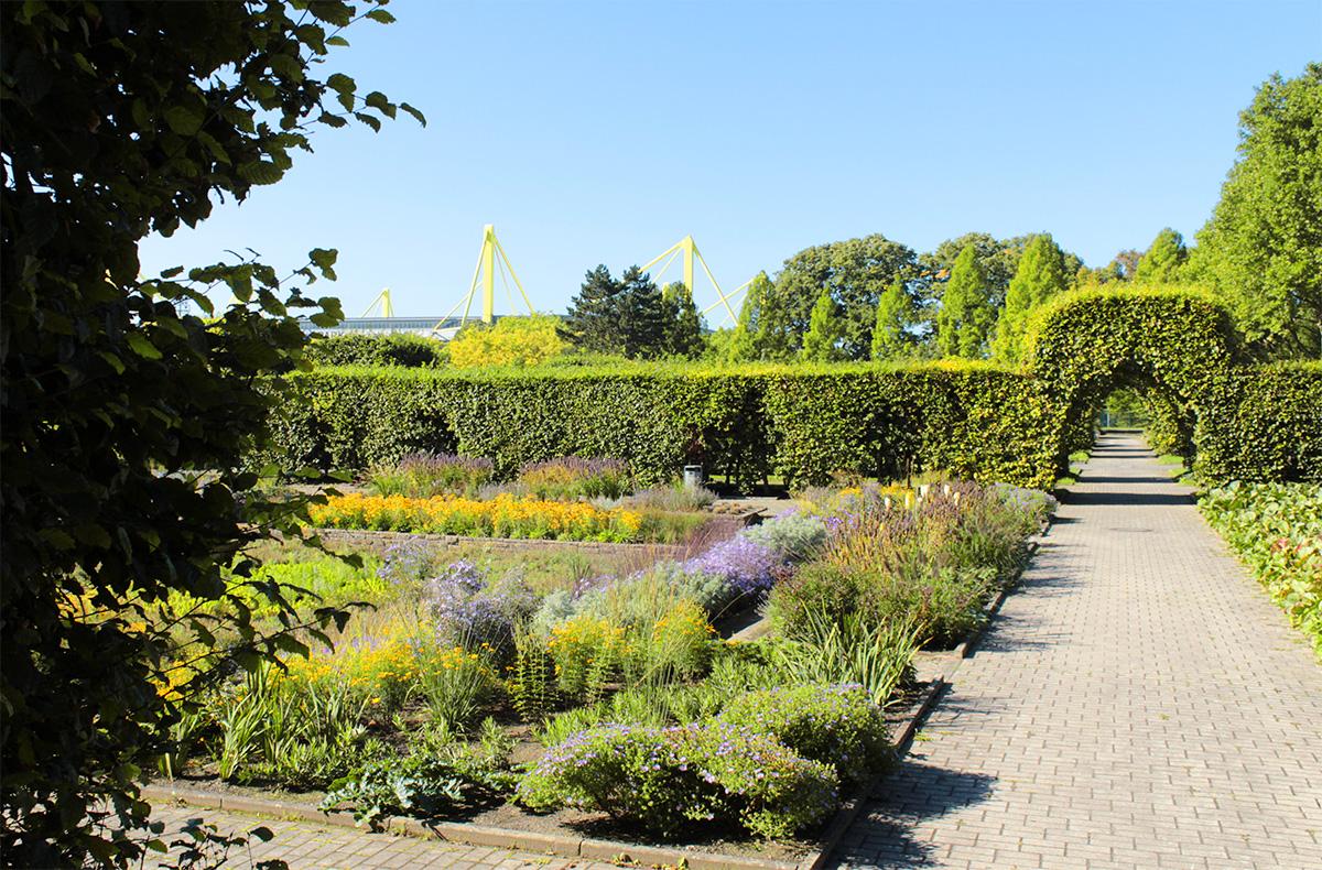 Der Rosengarten an der Westfalenhalle Dortmund
