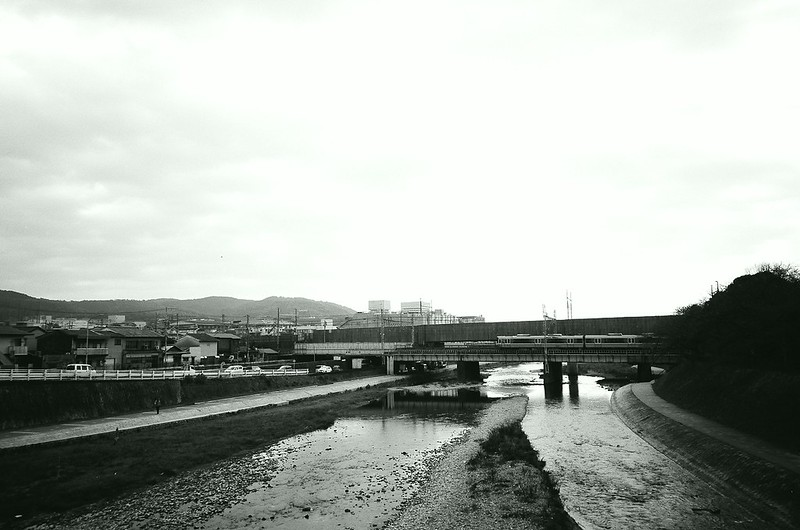The Kamogawa River