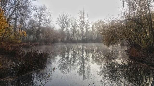 Reflectante-la-orilla