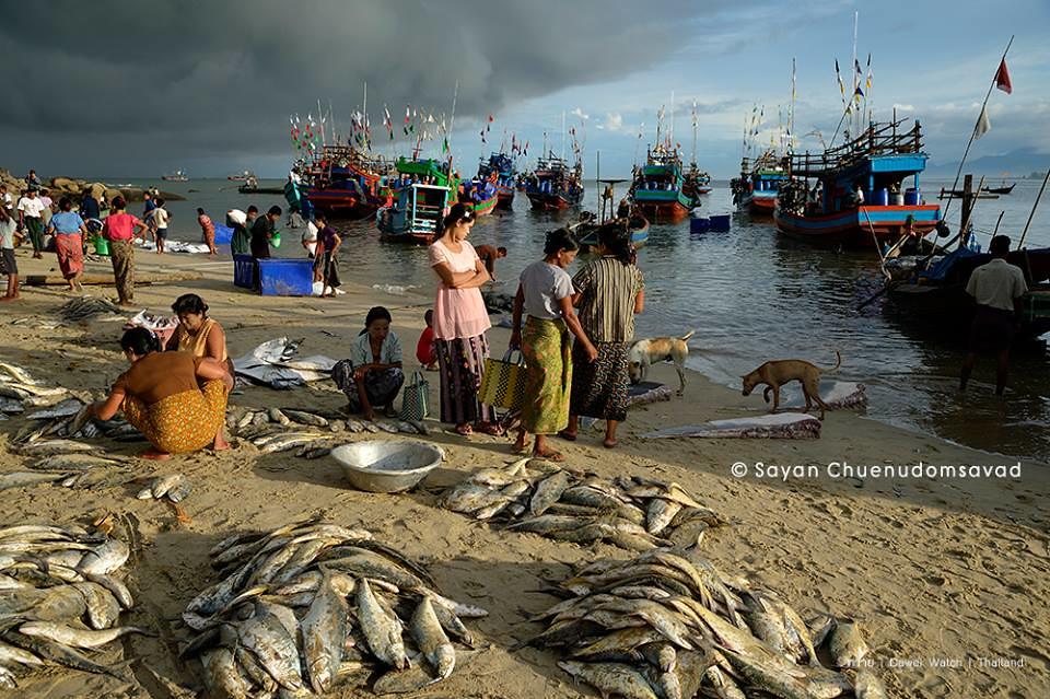 ตลาดบ้านตะบอเส็กแสดงให้เห็นความอุดมสมบูรณ์ของทะเล Sayan Chuenudomsavad