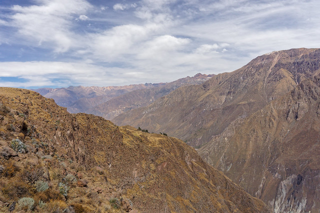 Hike in the Colca canyon