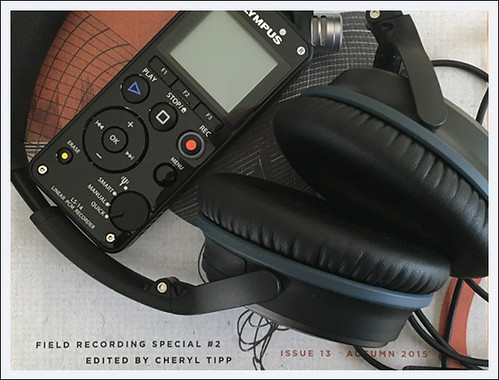 BLOG - Field Recording