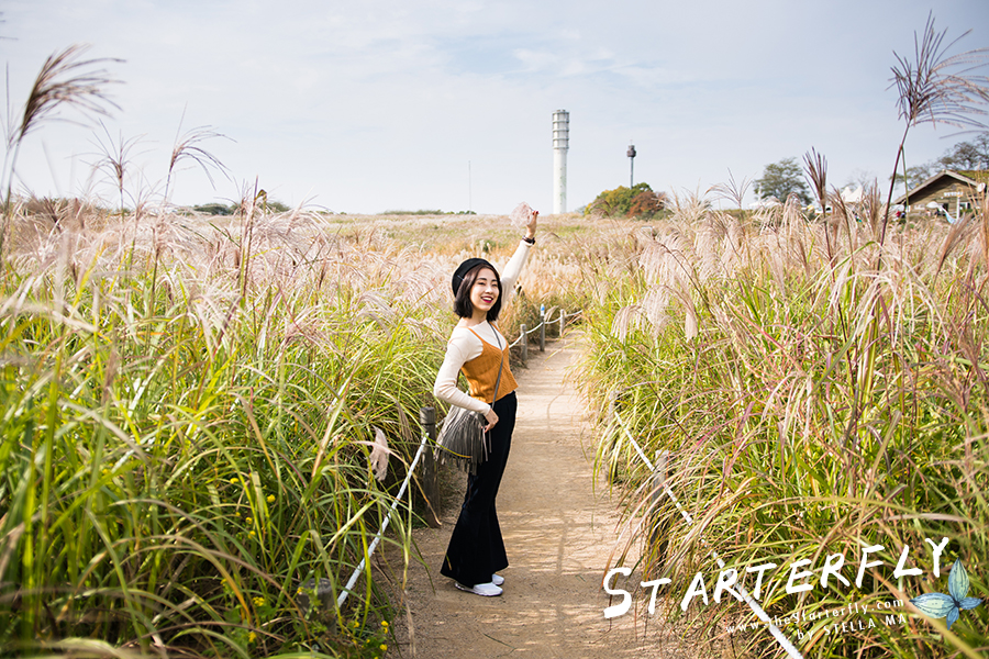 stellama_haneul-park_6