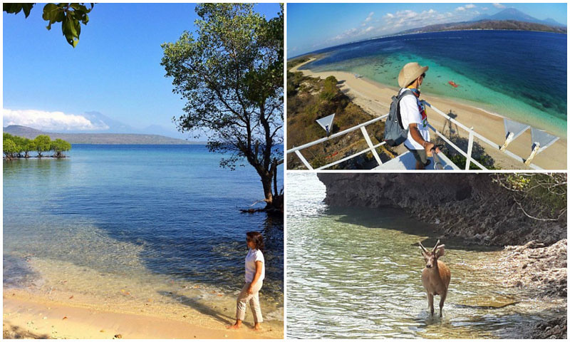 West-Bali-things-to-do-via-ninaasmara,-Ardiyanto-Ariesyahputra,-Anandita-Makes