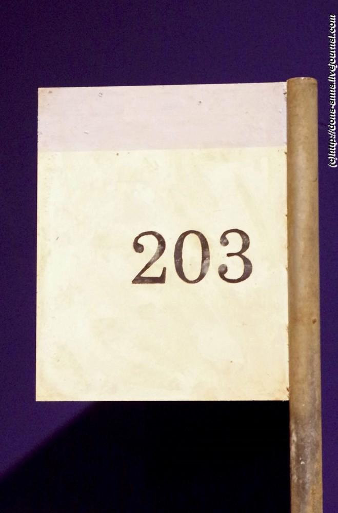 IMGP3102a-a