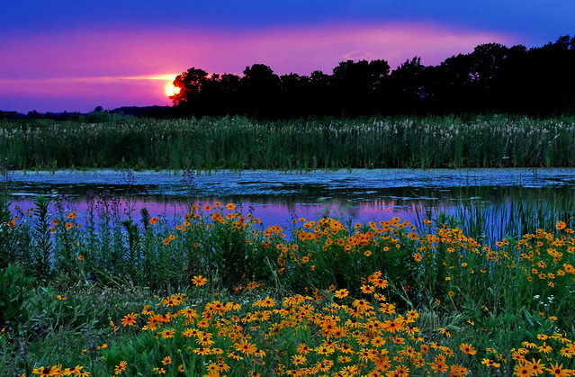 Wetlands sunset flickr photo sharing - Beautiful panoramic view house to take full advantage of the scenery ...