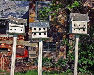 Birdhouses | by FotoEdge
