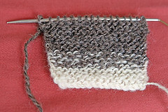 Handspun Swatch | by panopticon