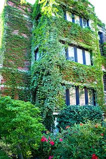 Ivy Park Apartments