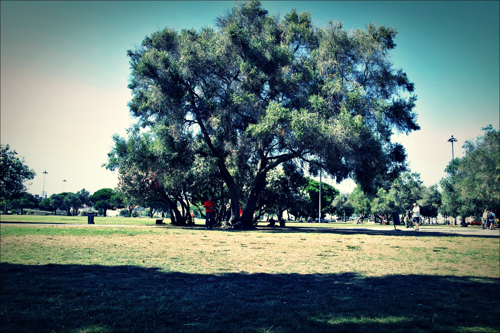 벨렘 탑 근처 공원-'리스본 벨렘지구'