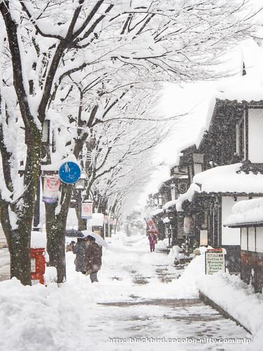Snowday 1 #07