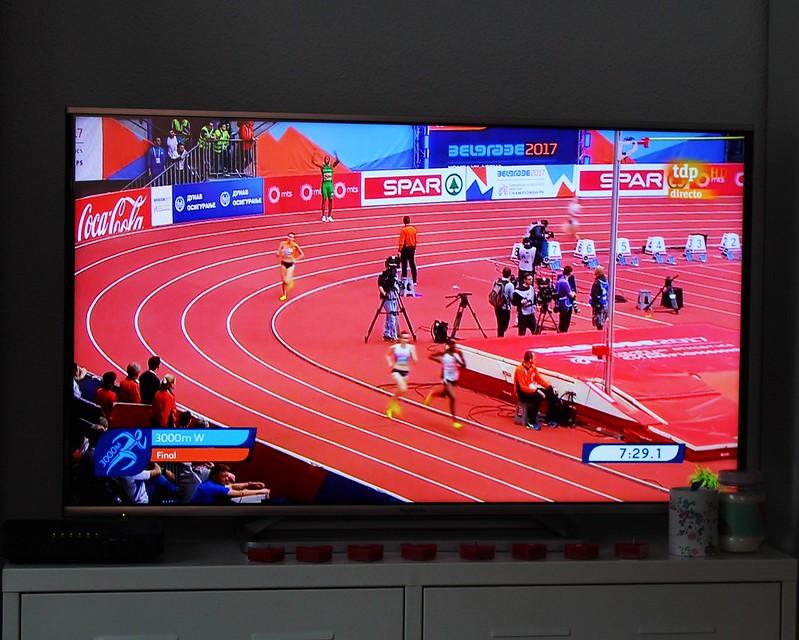 Belgrado 2017 atletismo