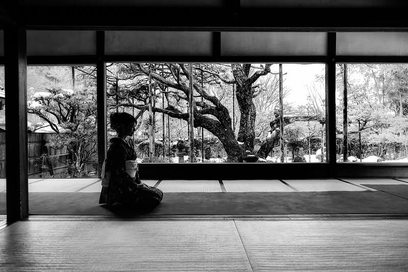 静寂 ( Silence ) / Cocoro Kusano