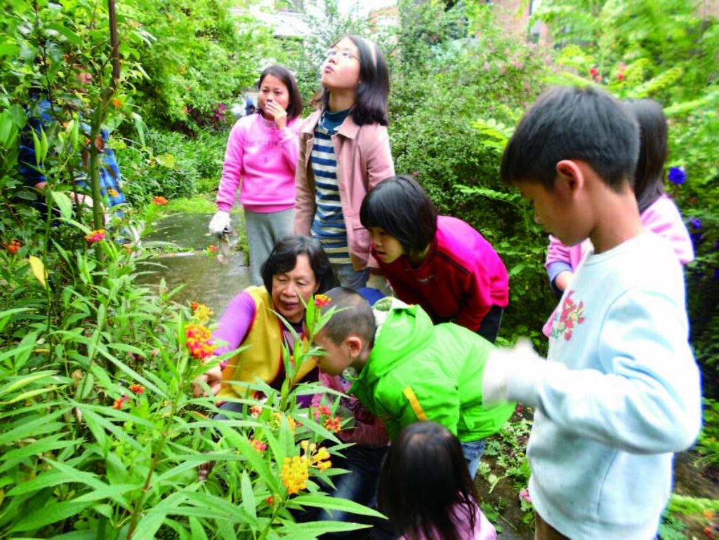 張淑貞指導社區親子親近自然。圖片來源:環保署。