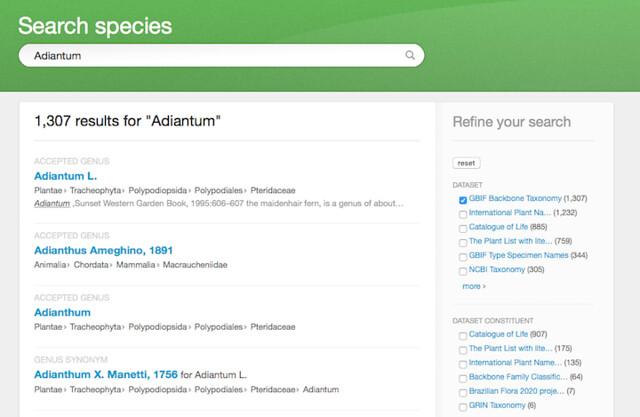 GBIF Search Results - Adiantum small