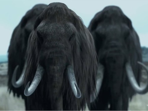 4woolly-mammoth