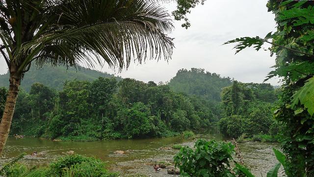 167-Kitulgala