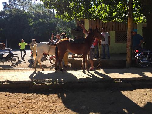 45 - Pferde werden gesattelt