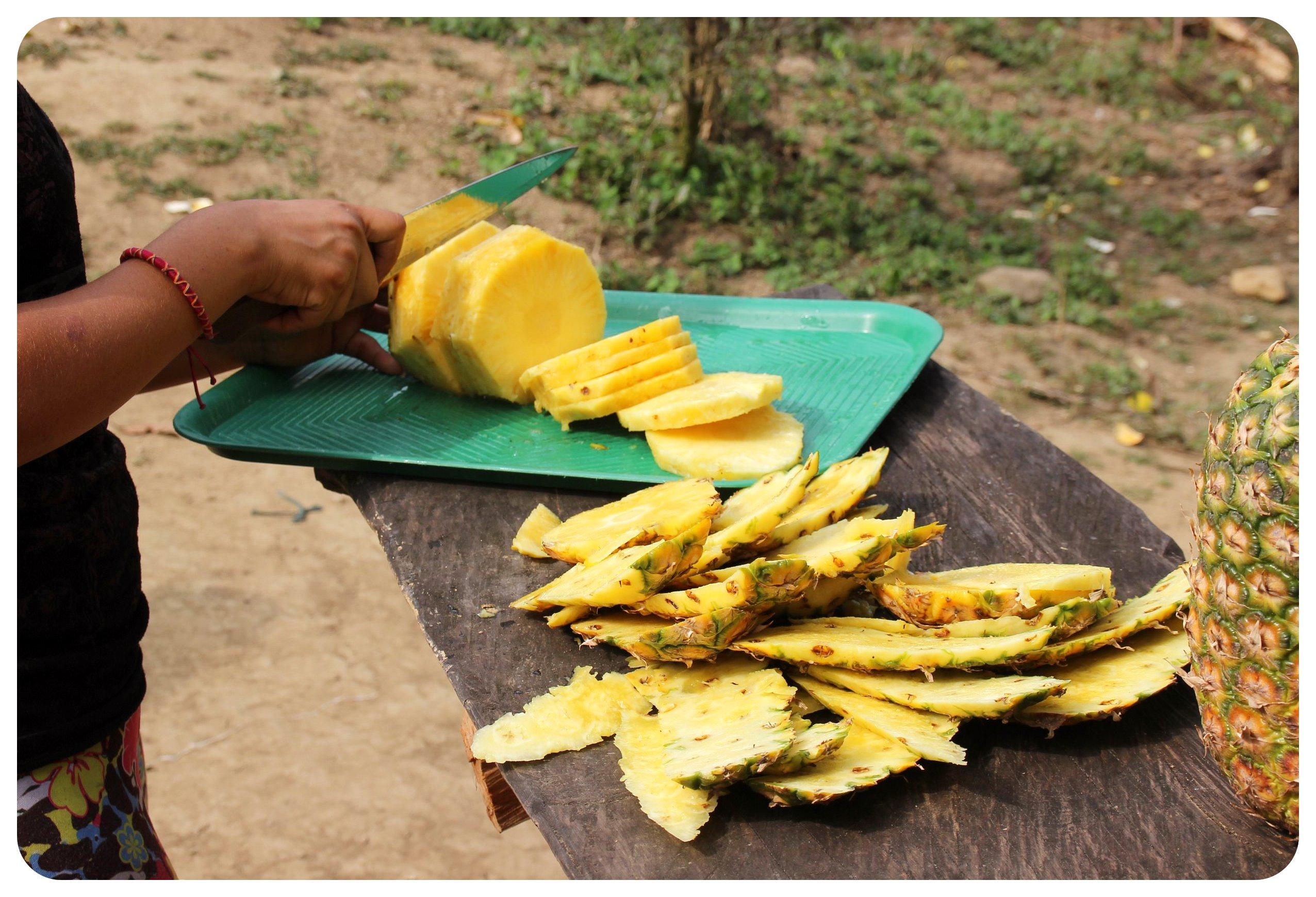 ciudad perdida pineapple snack