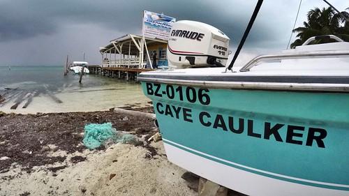 Land of Belize 2017