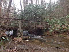 Bridge on High Shoals Falls Trail