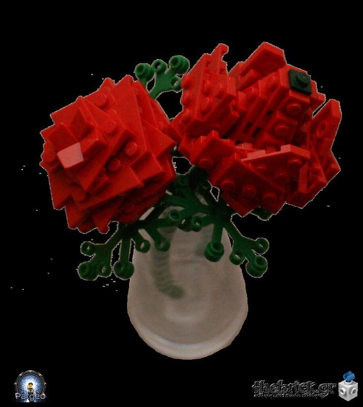 [MOC]: Rose 32058835334_a7a7202c61_c