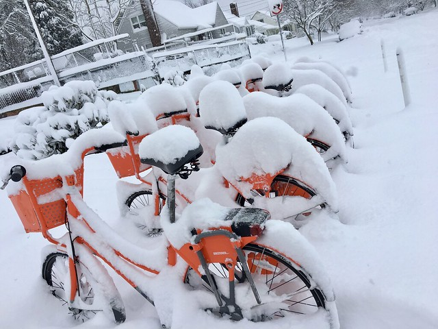 Riding bike share in the snow