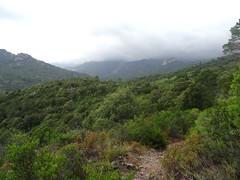 Reconnaissance du sentier de Punta Piscia : la vallée de l'Osu