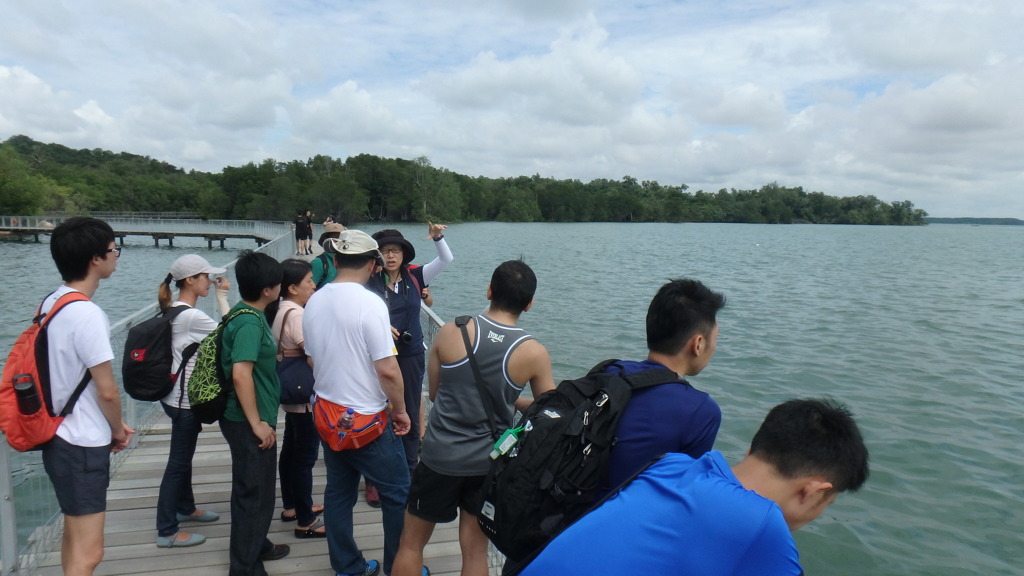 Monthly free guided walk at Chek Jawa with the Naked Hermit Crabs