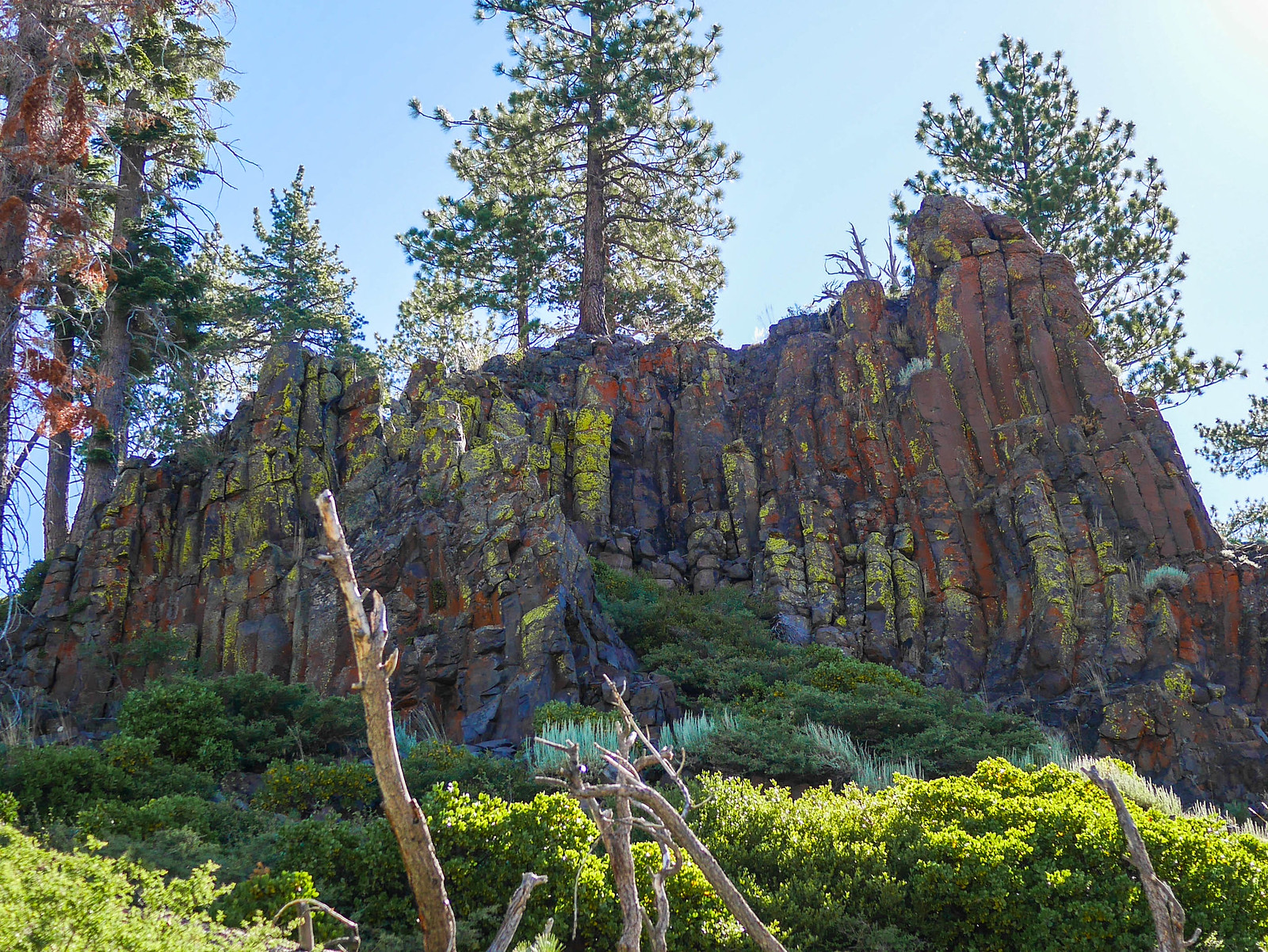 Basalt! Not quite as perfect as the official Postpile, still weird and cool.