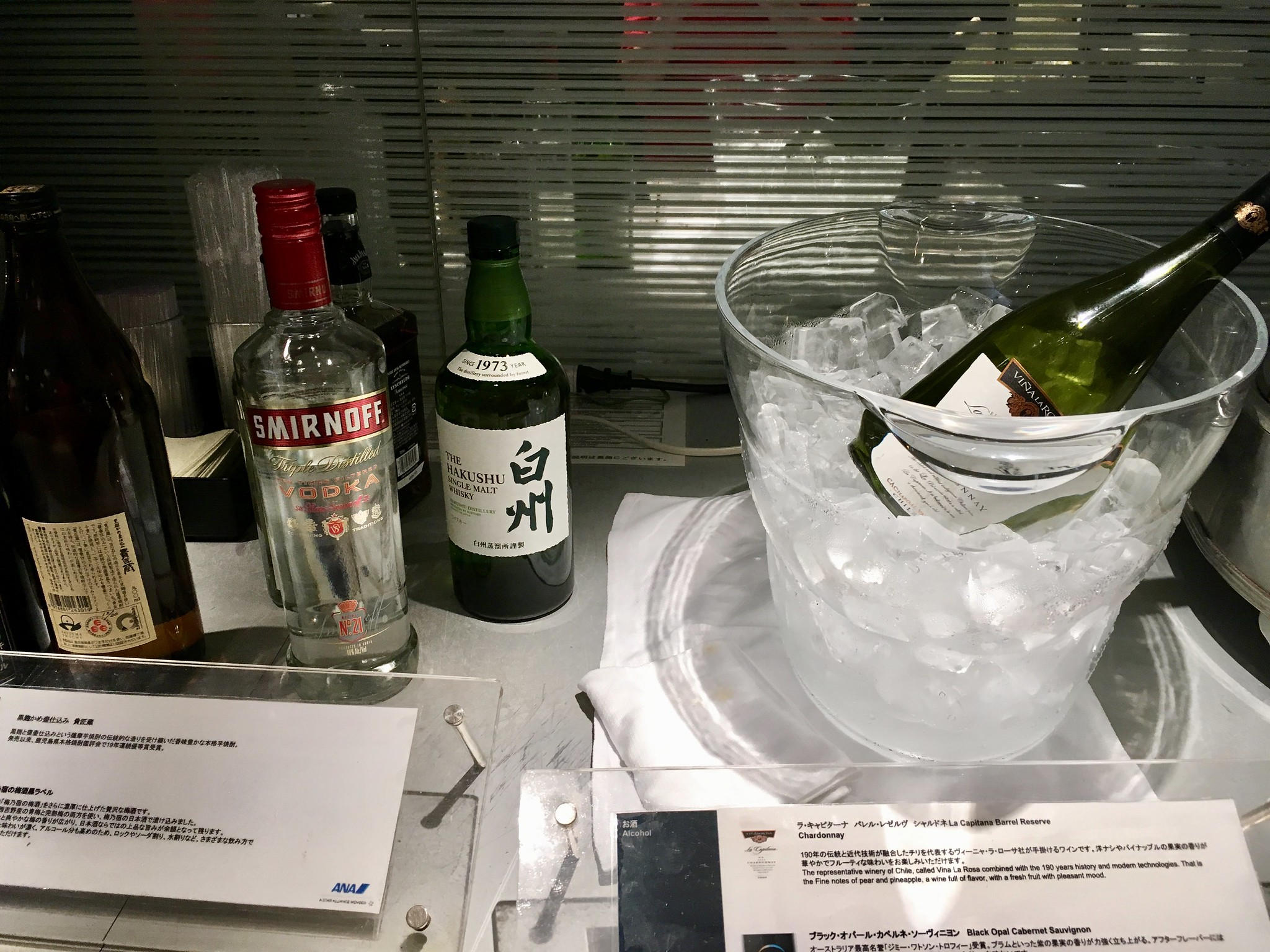 Narita Airport Terminal 1 ANA Lounge