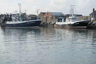 HOWTH FISHING FLEET [OCTOBER 2015]--109466 | by infomatique