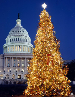 1995 U.S. Capitol Christmas Tree | by USCapitol