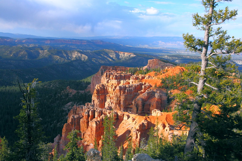 IMG_1185 Bristlecone Loop Trail, Bryce Canyon National Park