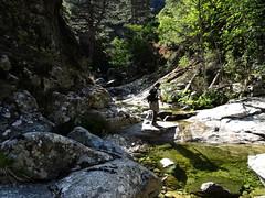 Remontée de l'Ancinu entre la bergerie et la vasque-cascade contournée en RD