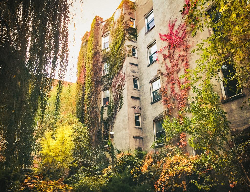 New York City Autumn East Village Community Garden In Al Flickr