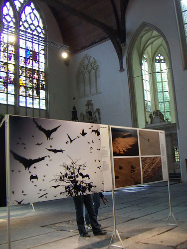 Amsterdam Oude Kirke World Press Photo Exhibition | by Madieta