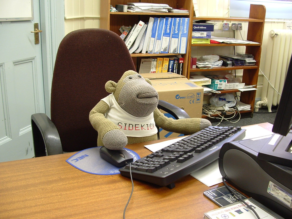 The office monkey a useful addition to any team the offi shaz wildcat flickr - Versieren kantoor ...