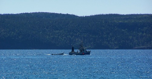 Homeward bound a fishing boat makes it 39 s way up newman for Sound bound fishing