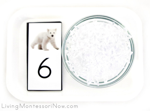 Polar Bear Cub Cards and Counters
