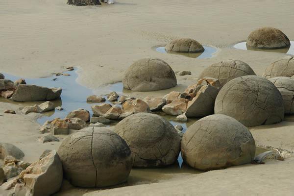 Moeraki boulders, Dunedin, Otago Peninsula & Sandfly Beach