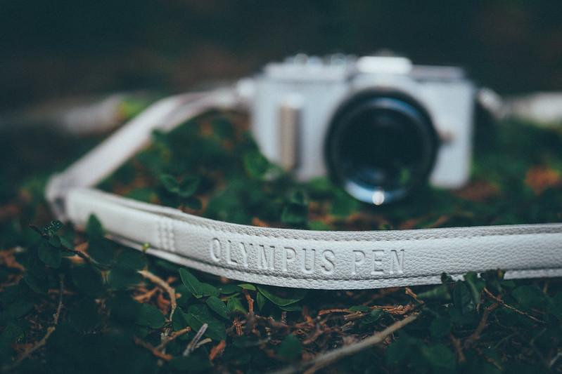 Olympus E-PL8|Panasonic DG 15mm f/1.7