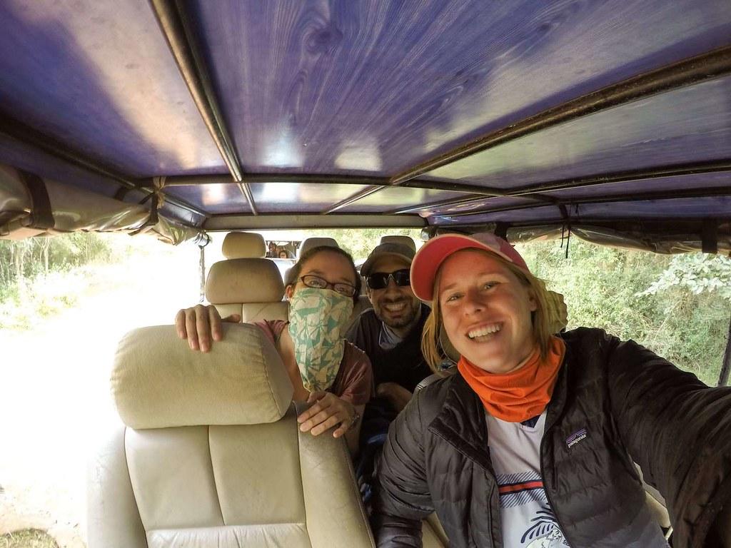 Going on safari!
