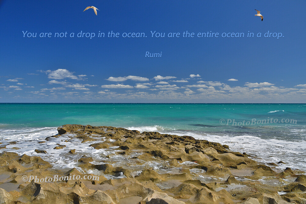 Inspirational Quote Buy High Quality Quote Prints Here Flickr