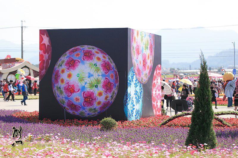 [台中新社花海] 藝想萬花筒|台中國際花毯節