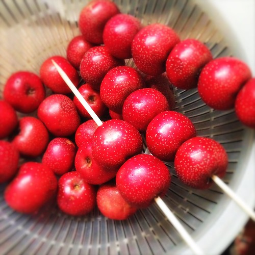 bing tanghulu candied hawthorn stick 冰糖葫蘆  chinese recipes at, Beautiful flower