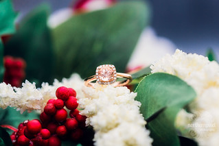 Engagement Ring | by Shauna Stanyer (Northern Pixel)