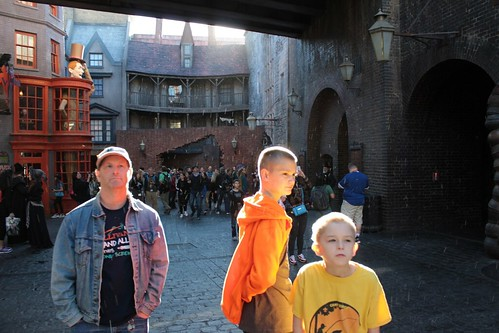 Diagon Alley (34)